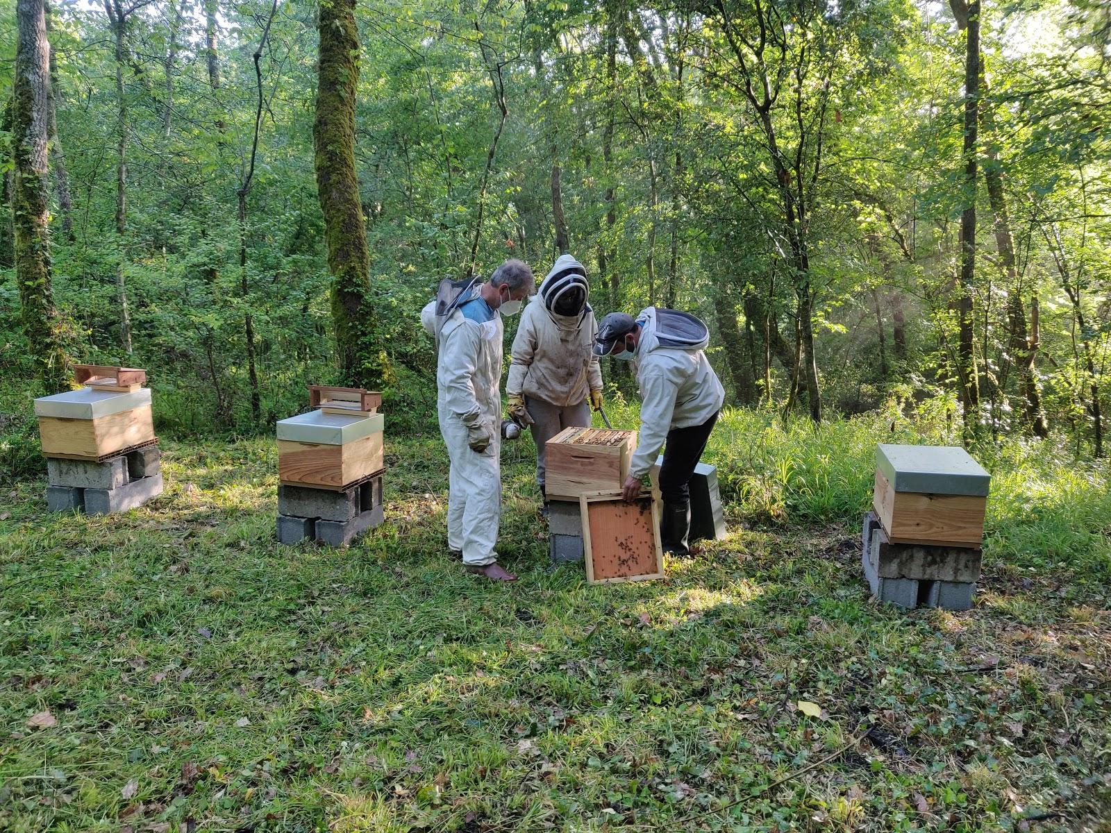 Apiculteurs avec les ruches du château de Buzet