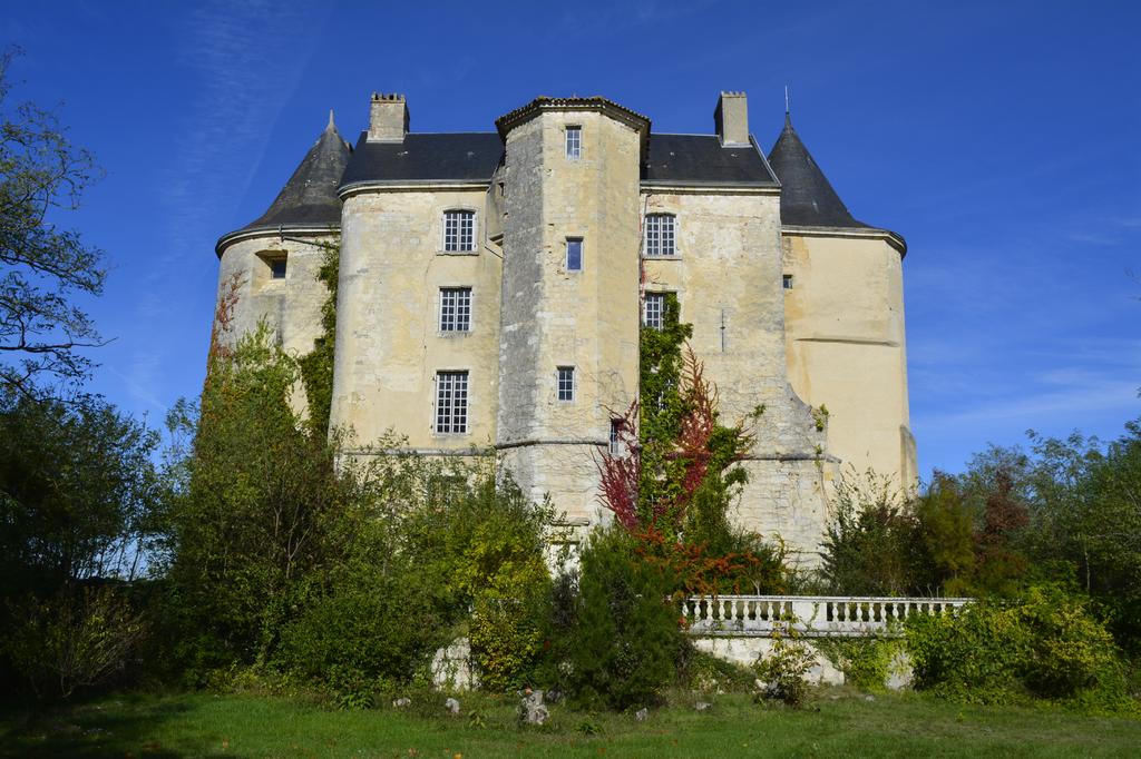 Le château juste après son achat en octobre 2018